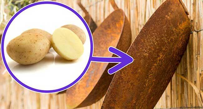 Khoai tây giúp đánh bật các vết rỉ sét ở chảo gang và các công cụ khác trong phòng bếp